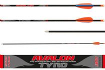 Avalon Tyro Carbon Arrows